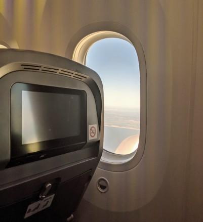 Me on the flight (2).